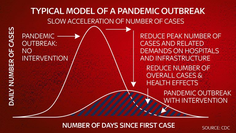 Typical model of a pandemic outbreak