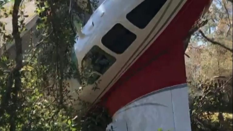Two men survive following a plane crash in Florida