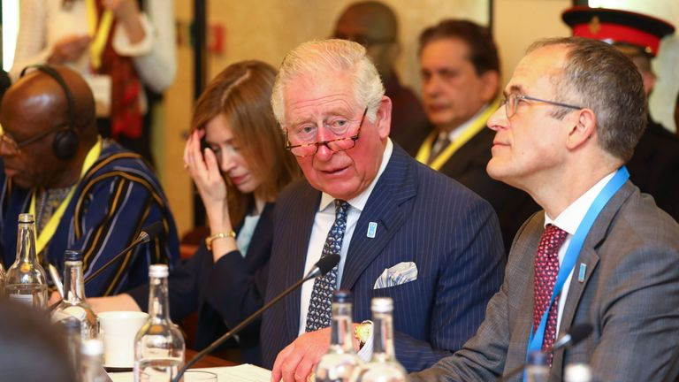 Charles sat across from Prince Albert at the WaterAid summit