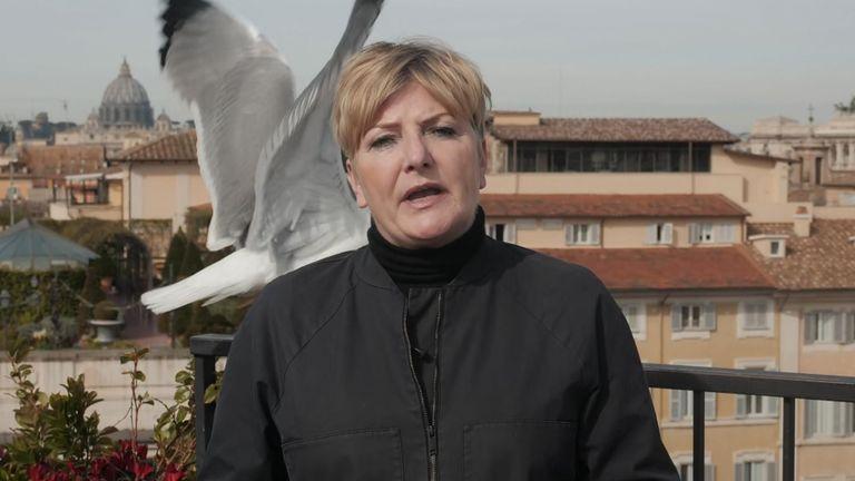 Seagull interrupts Michelle Clifford's live