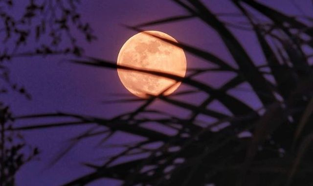 'Dazzling' pink supermoon offers much-needed respite from COVID-19 lockdown