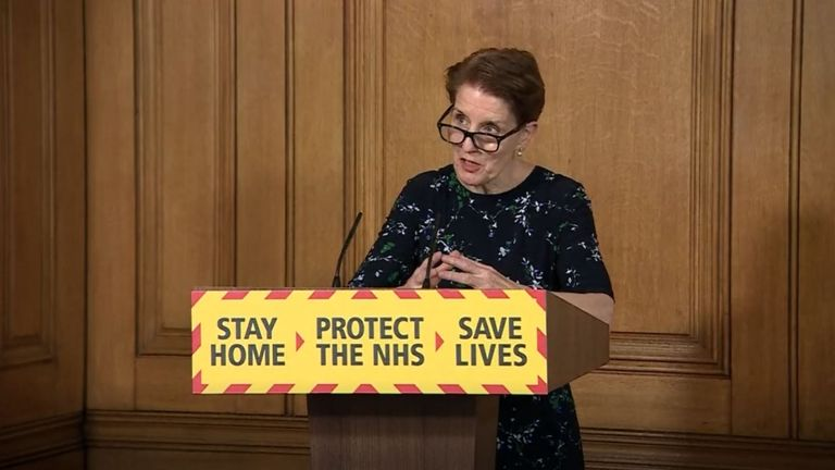 Screen grab of Medical Director at Public Health England Professor Yvonne Doyle during a media briefing in Downing Street, London, on coronavirus (COVID-19).