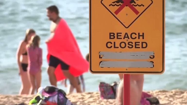 , Coronavirus: Bondi Beach reopens to swimmers and surfers as lockdown relaxed in New South Wales   World News