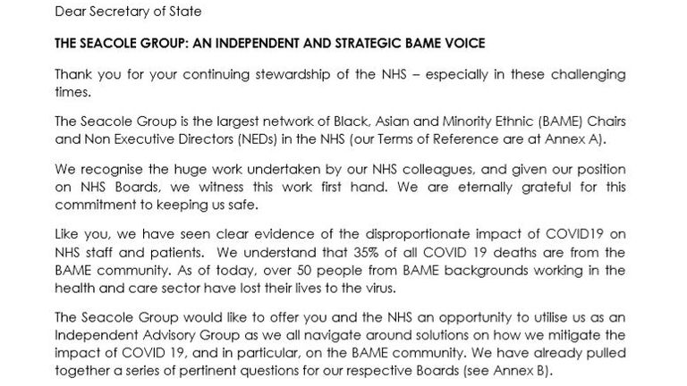 The letter sent by the Seacole Group offering to help as independent advisory group