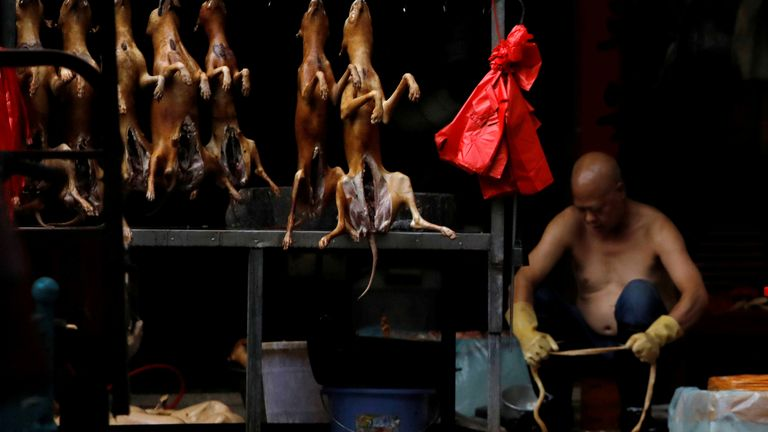 Dogs are currently considered to be livestock in China