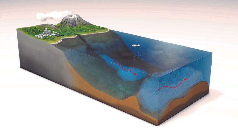 Scientists found most microplastics are swept onto the seabed instead of floating near the surface. Pic: Science journal
