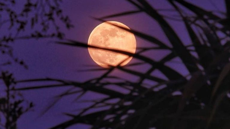 An image of the pink supermoon over Burton on Trent, taken by  Twitter user @_SarahGeorgina