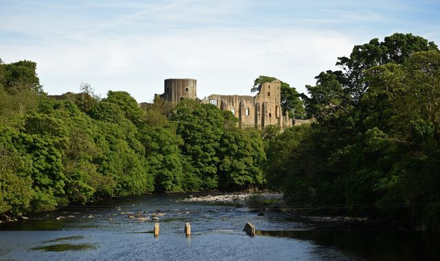 Coronavirus: Barnard Castle's TripAdvisor page flooded with spoof Dominic Cummings reviews