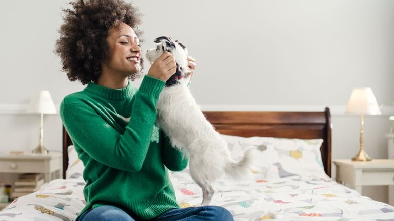 Bought By Many entered the pet insurance market in 2017