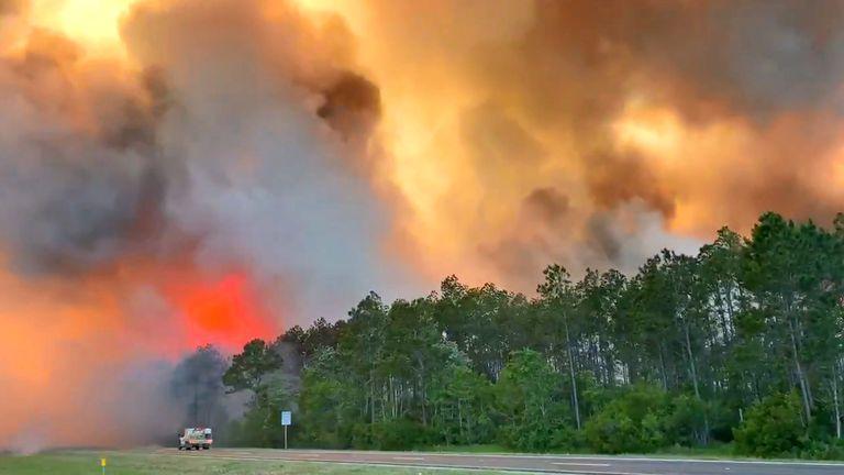 Florida fire. Pic: @FDACS