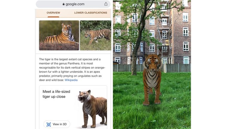 Users can click on 'View in 3D' to see the animals on their smartphones