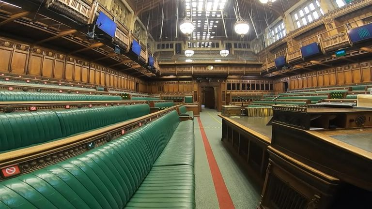 Pandemic forces parliament to welcome digital democracy