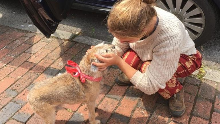 Ms Symes is reunited with her border terrier after arriving in the UK