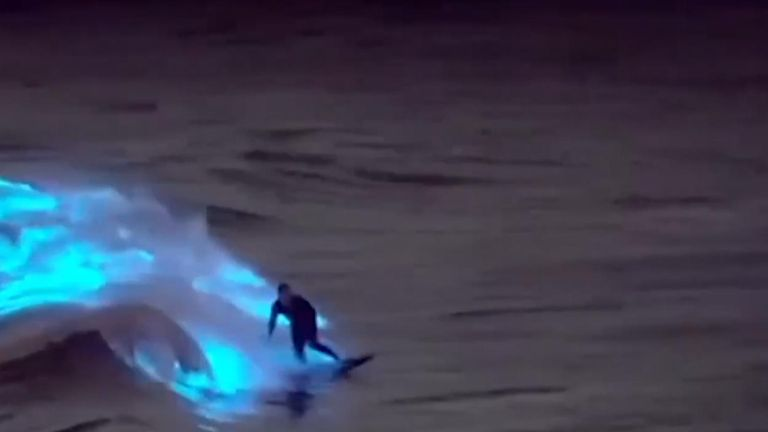 Surfer glides across bioluminescent waves