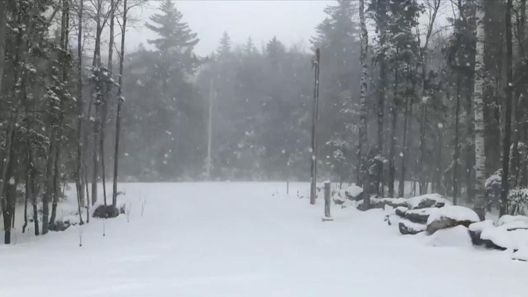 A polar vortex brought rare winter weather conditions to the northeast of the US