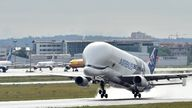 Airbus' Beluga XL takes off from Toulouse Blagnac airport on April 30, 2020. - The aircraft entered service on January 09, 2020, after receiving its type certification on 13 November 2019. (Photo by REMY GABALDA / AFP) (Photo by REMY GABALDA/AFP via Getty Images)