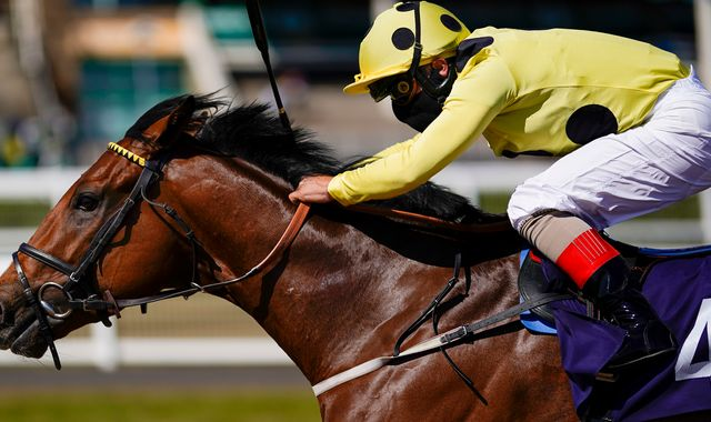 Professional sport returned to Britain with a 10-race card at Newcastle on Monday