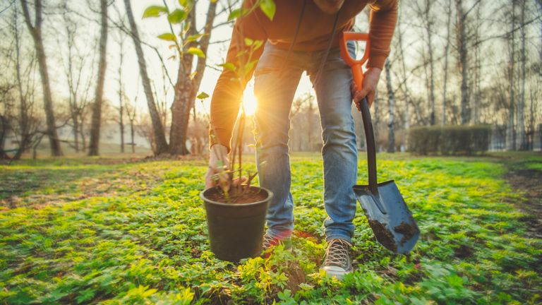 Unrecognised person gardening in spring