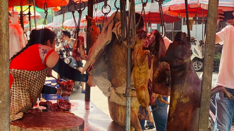 Dog meat carcasses hanging up at the market.