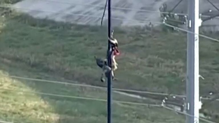 Man is rescued from flagpole in Texas and taken to the ground