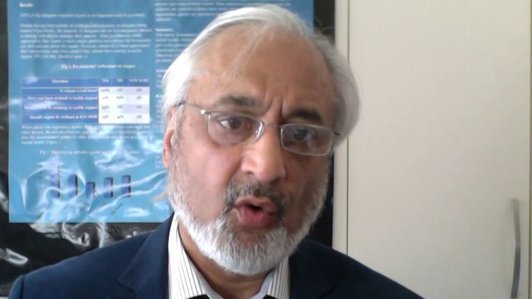 The British Association of Physicians of Indian Origin chair told Sky News the review felt like a 'disservice'.