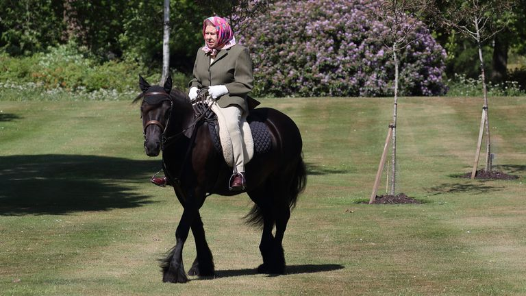 The Queen rides Balmoral Fern, a 14-year-old Fell Pony, in Windsor Home Park over the weekend