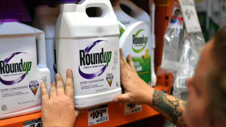 An employee adjusts Roundup products on a shelf at a store in San Rafael, California, on July, 9, 2018