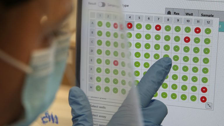 A scientist views a screen showing coronavirus test results - with red ones being positive