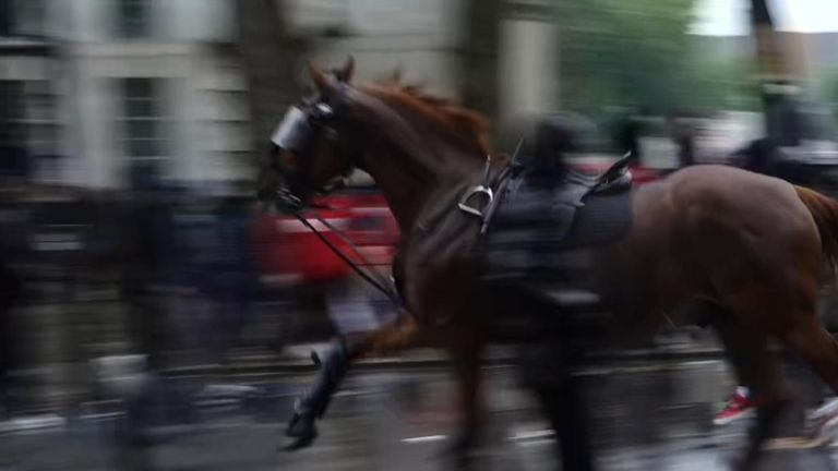 Loose police horse bolts amid London protests