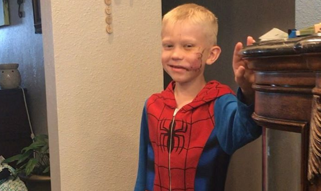 'Pal, you're a hero': Boy, 6, who saved sister from dog attack gets message from Captain America