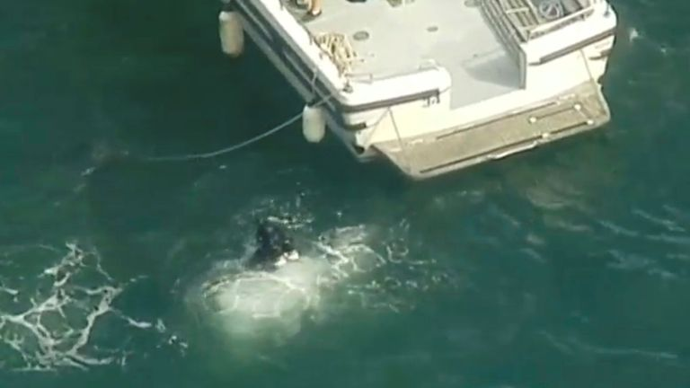 Diver is seen entering the water from rescue vessel after a seaplane crashed into a Sydney river