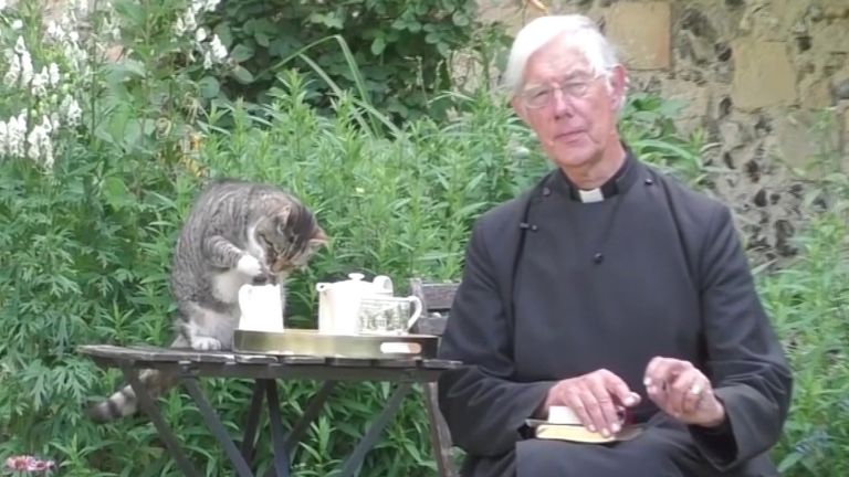 Tiger the cat sees the chance to go for the milk while the Dean of Canterbury isn't looking