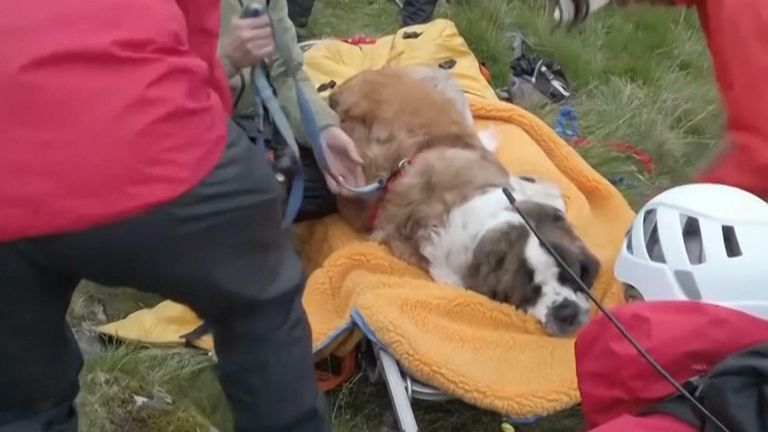 Daisy collapsed while walking down Scafell Pike, and had to be carried down the mountain over five hours on a stretcher.