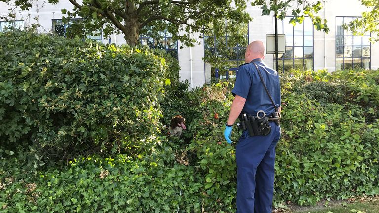 A police sniffer dog with its handler searching bushes outside the hotel