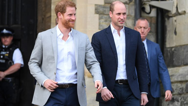 Brothers Harry and William on a walkabout in May 2018