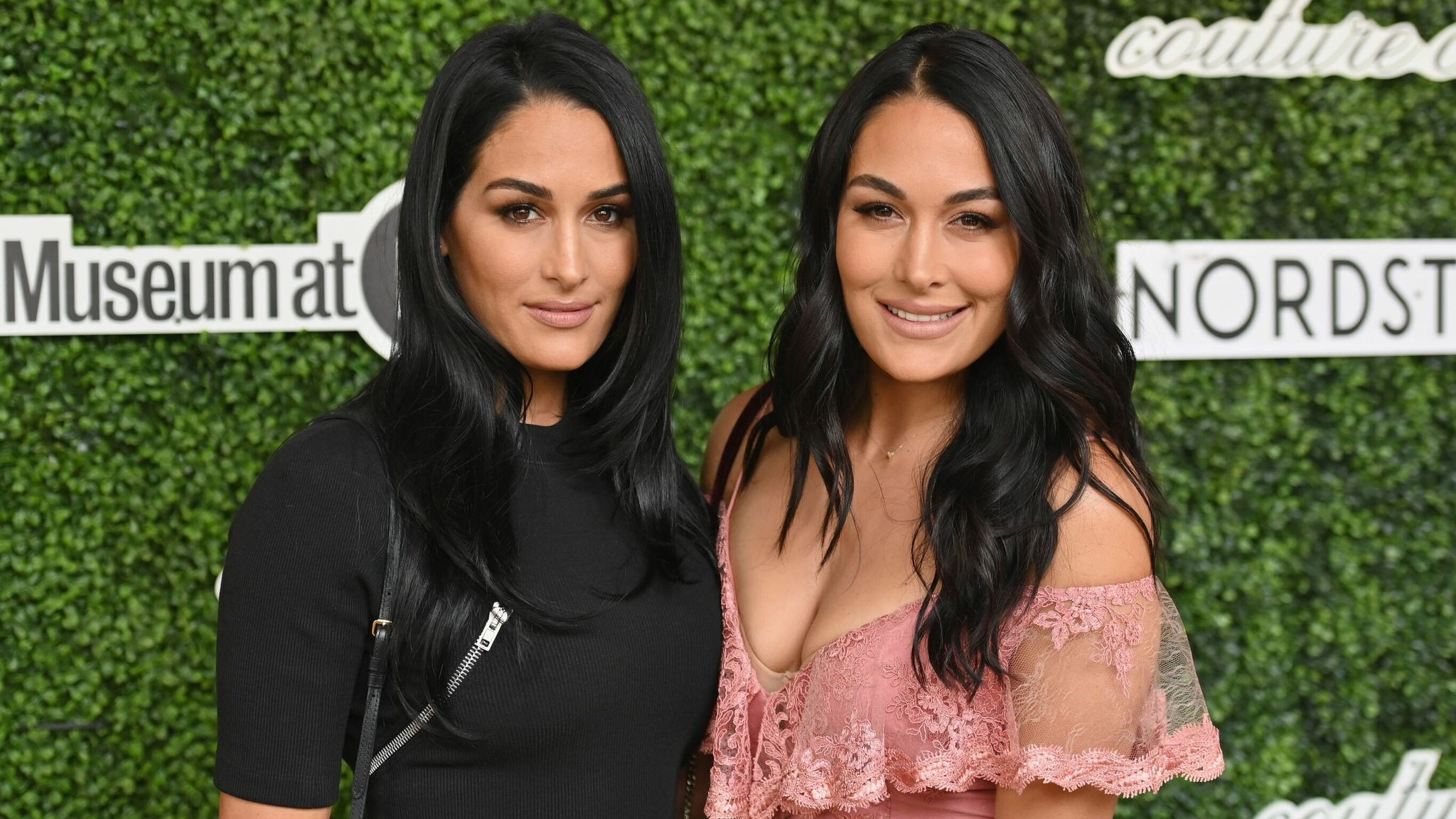The Bella Twins: WWE stars Nikki and Brie Bella give birth just one day apart | Ents & Arts News | Sky News