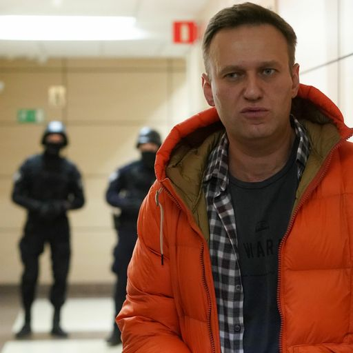 Who is Alexei Navalny? Tech-savvy anti-corruption fighter and thorn in Putin's side