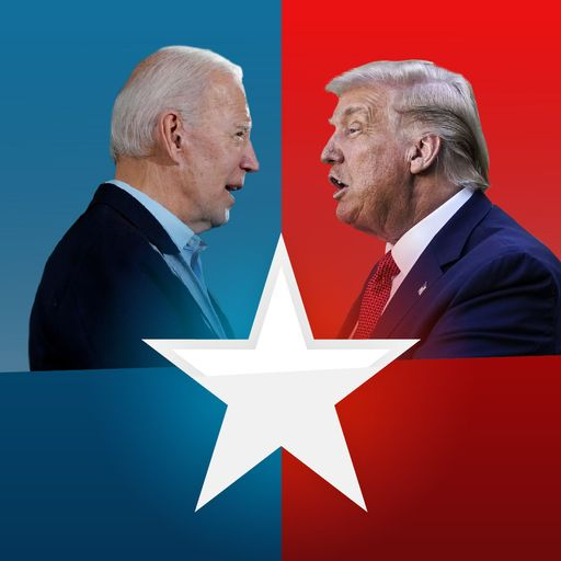 US election - a simple guide to the 2020 presidential race