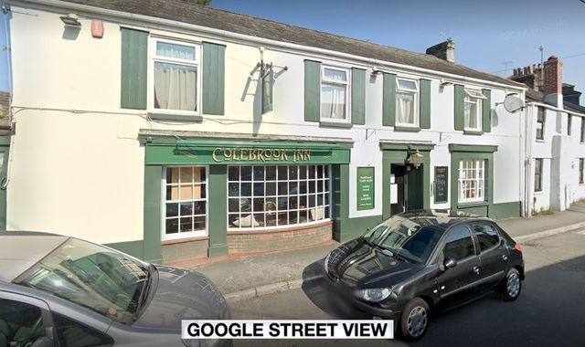 Four-month-old baby 'knocked unconscious' during Plymouth pub brawl