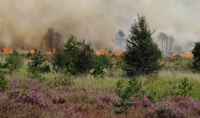Fire crews battling huge blaze on Chobham Common in Surrey