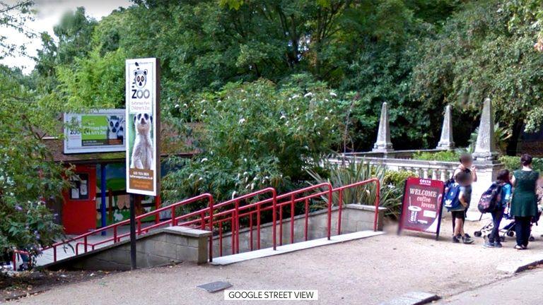 Battersea children's zoo