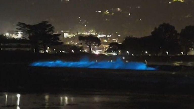 Waves glow blue in California