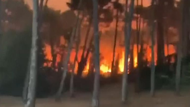 The fire destroyed more than 150 hectares of a forest in France