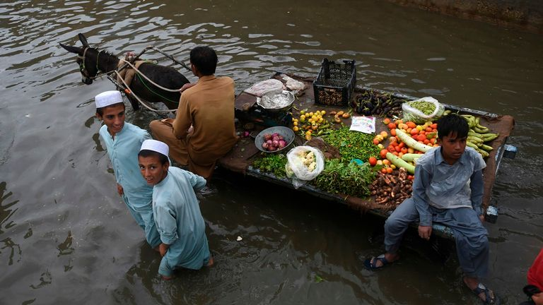A vegetable vendor rides on his donkey cart through a flooded street in Karachi