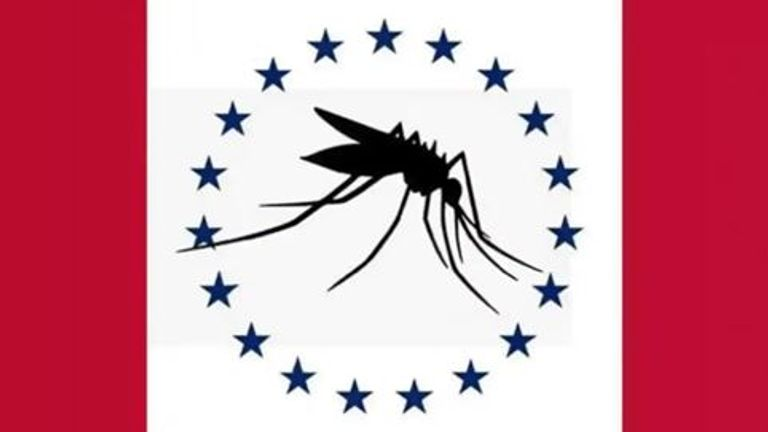 The flag with the mosquito which slipped through the screening process. Pic: Mississippi Flag Commission