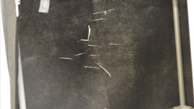 A photo showing incision markings was shown to the court
