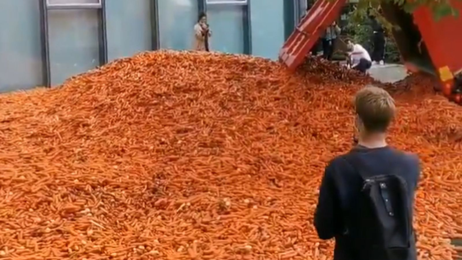 Truck load of carrots dumped outside London university | UK News