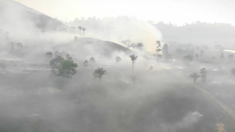 البرازيل: إزالة غابات الأمازون تصل إلى أعلى مستوى لها في 12 عامًا في عهد الرئيس بولسونارو    اخبار العالم