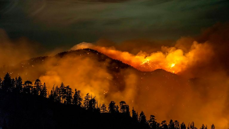 The Bobcat Fire burns through the Angeles National Forest