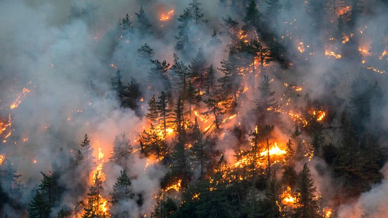 At least 31 people have died in wildfires raging across the West Coast